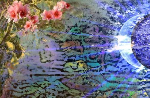 Bruno Rigolt_Le jardin lunaire_web_détail