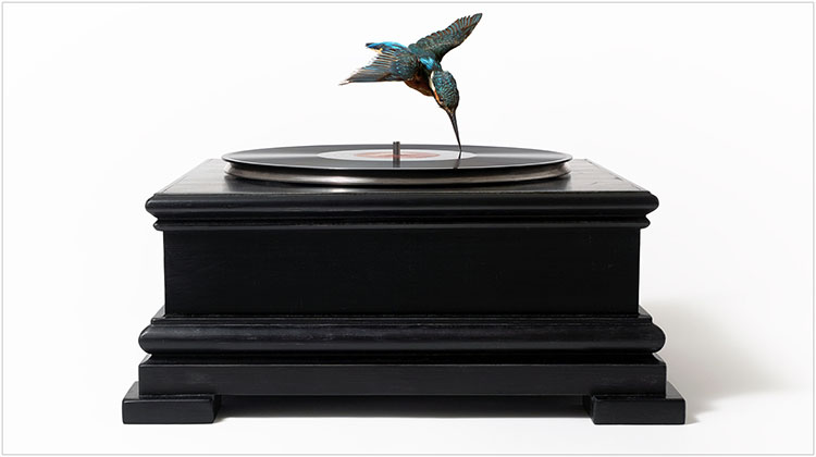 Nancy_Fouts_Bird_on_record_player