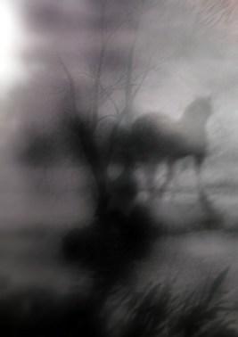 cheval_brume