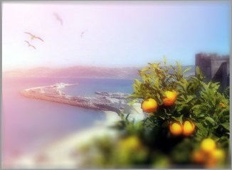 Tanger_Bruno_Rigolt