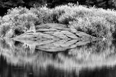 Mayflower Lake - 01/17/2013 - Arrowhead Provincial Park