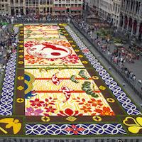 """20ème """"Tapis de Fleurs"""" de la Grand' Place"""