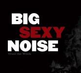 big-sexy-noise-trust