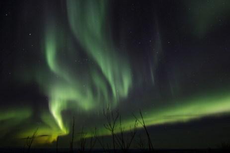 murphys-aurora-46-of-64