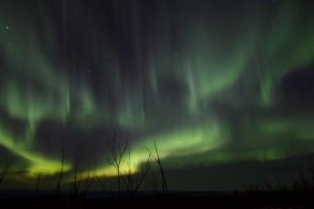 murphys-aurora-50-of-64