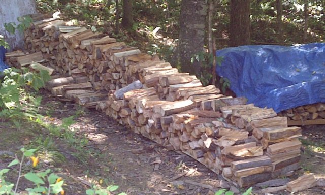 A couple of our woodpiles.