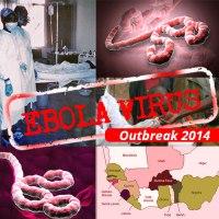 Ebola MOOC