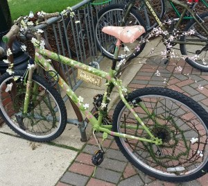 bike with flowers at Mary Washington 2016 May