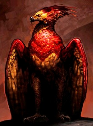 Phoenix from Harry Potter wiki