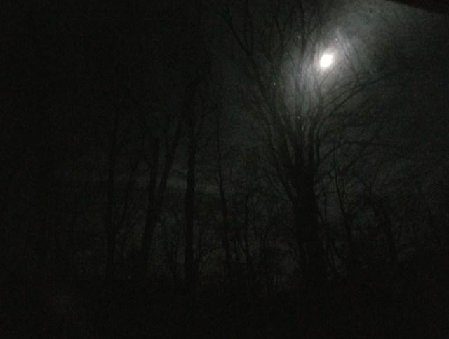 dark morning with moon