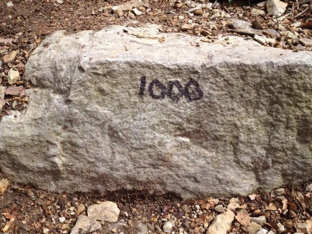 1000, by Cogdog
