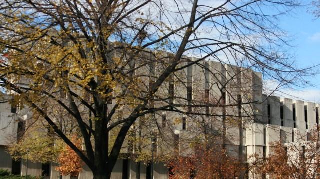 campus autumn Quinn Dombrowski