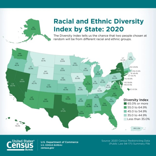 Census US diversity by state 2020