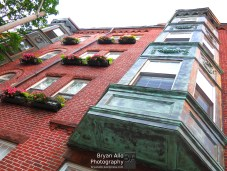 2015_Boston_LittleItaly_12
