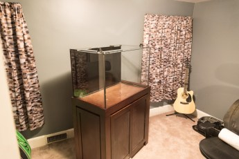 Tank and Stand