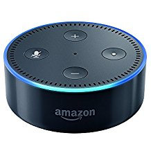 Article XII Alexa Skill