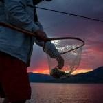Bryan Gregson_FLY FISHING-9