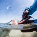 Bryan Gregson_Fishing-701