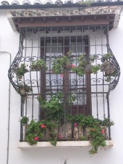 A typical Andalucian window