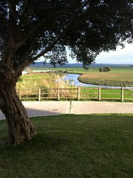 River walk 3