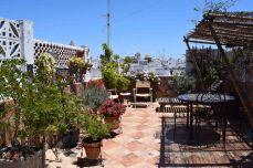 Carmen's patio