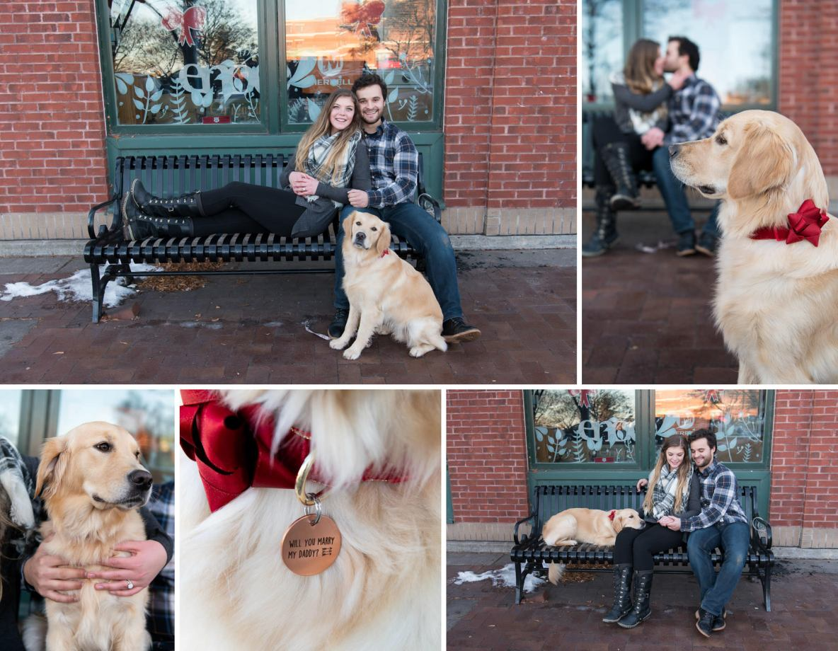 Engagement photos with Maya the Golden Retriever.
