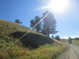 Blactail Plateau Drive 3
