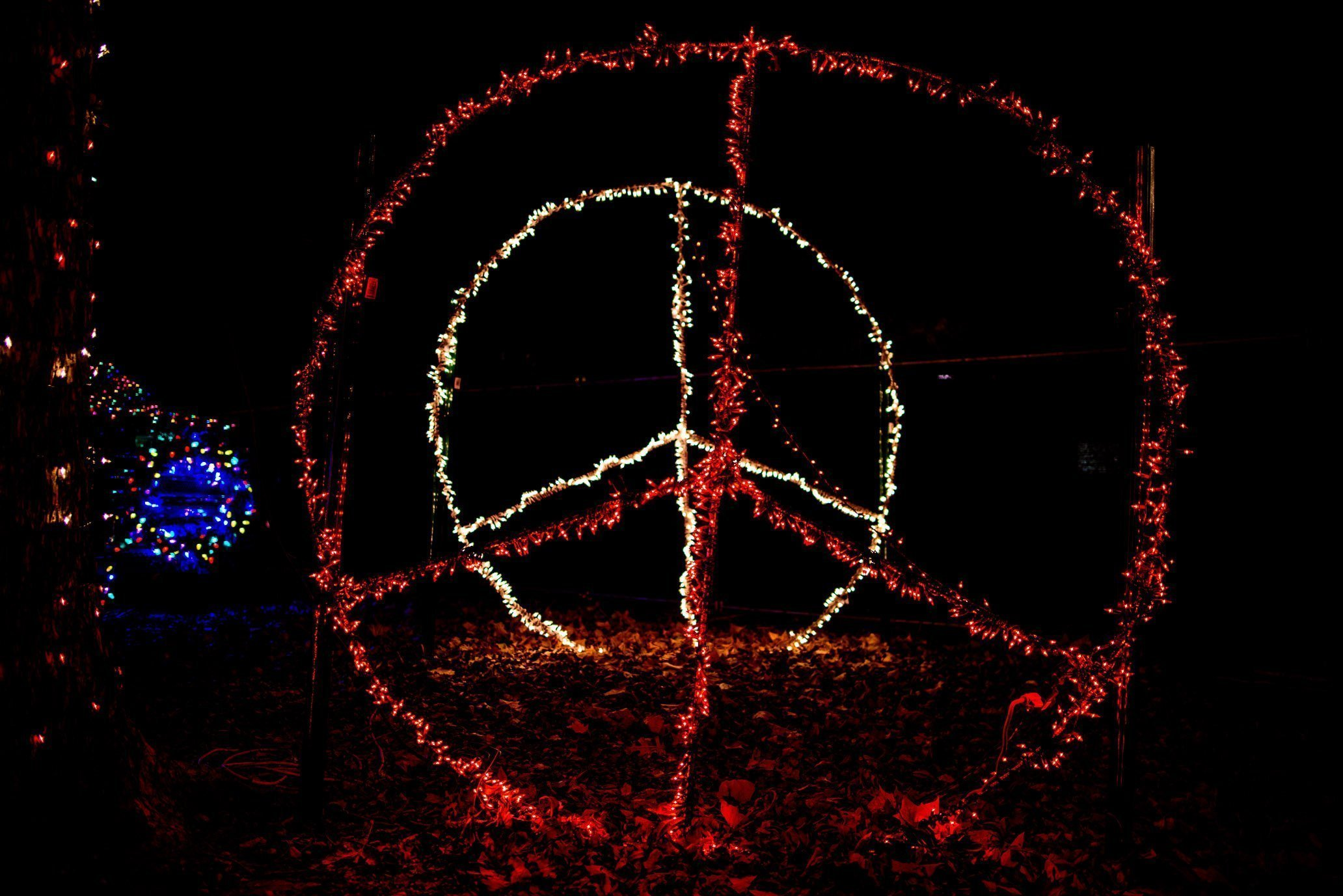 Trail of Lights, peace
