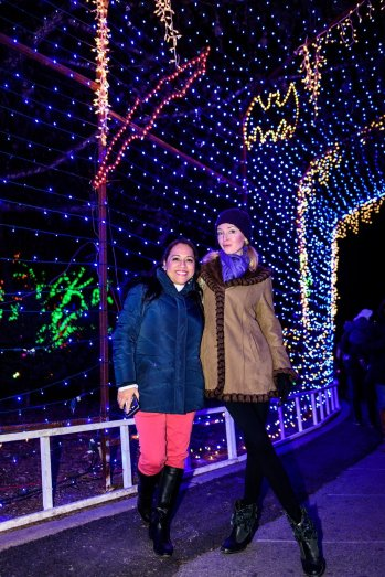 Trail of Lights, SuzyMae, Silvia
