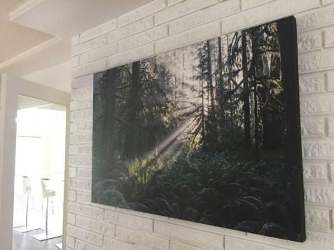 brycebarry-unveiled