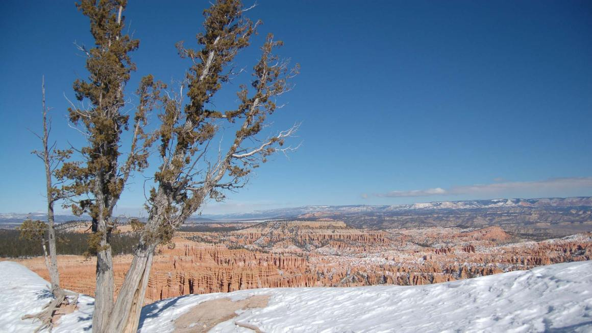Bryce Canyon blue sky and snow in winter