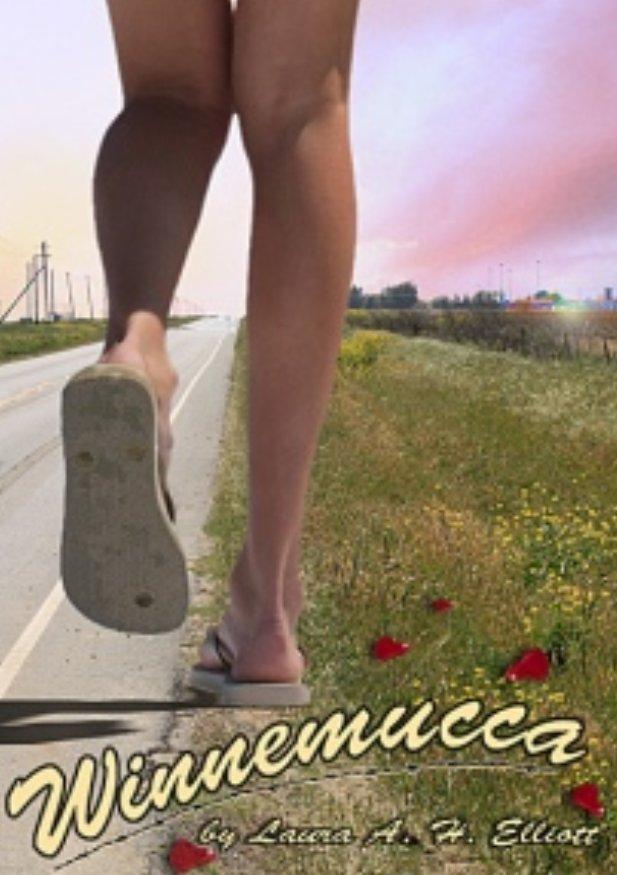 Winnemucca book cover