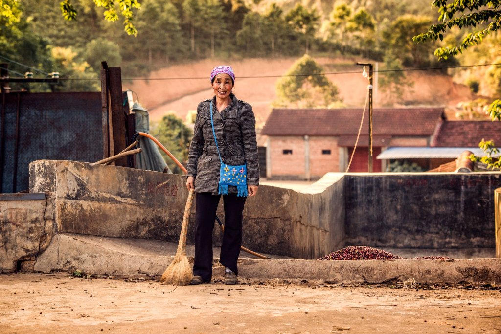 A working on a coffee farm in Yunnan, China