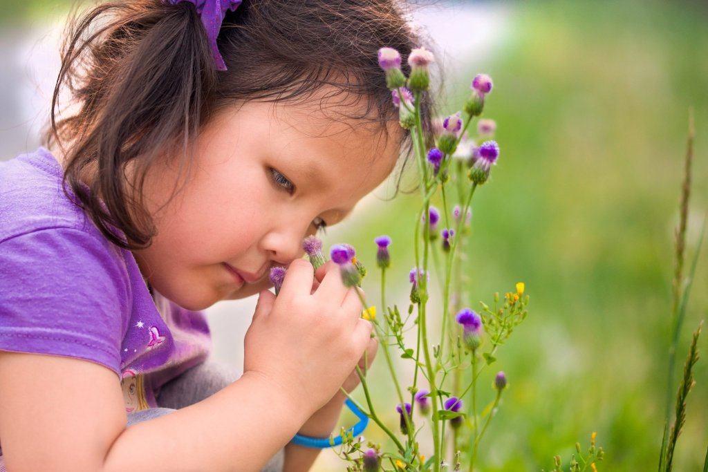 Photo of a girl touching flowers by humanitarian photographer Bryon Lippincott
