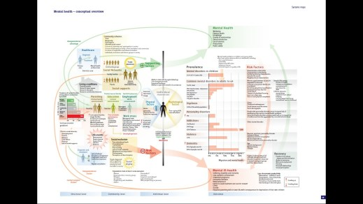 Mental health - conceptual overview