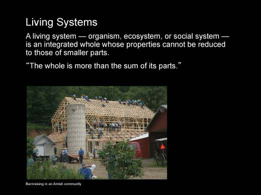 Fritjof_Capra_The-systems-view-of life_I_Page_10
