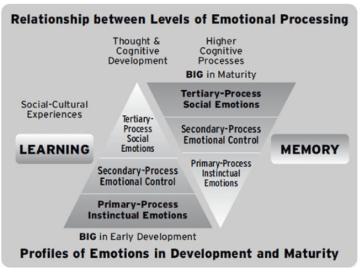 levels of emotional processing