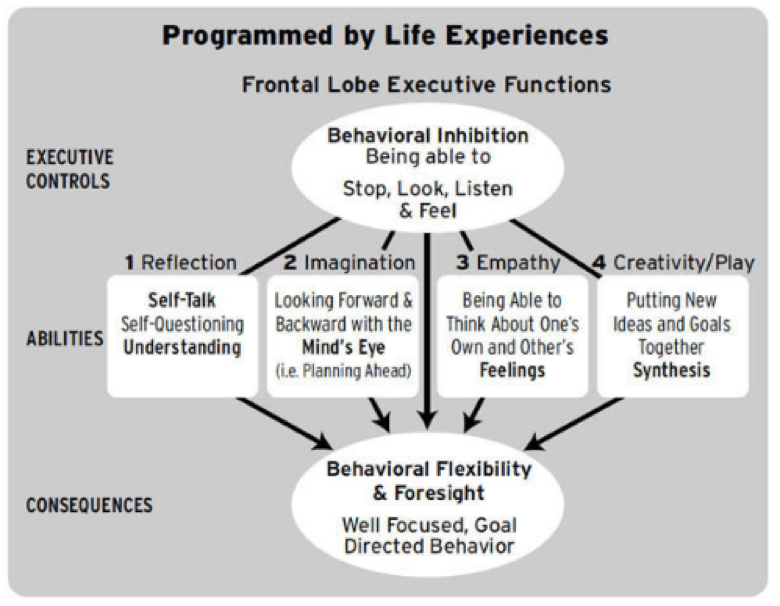 programmed by life experience