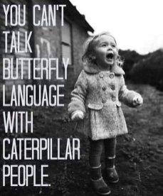 ButterflyLanguage