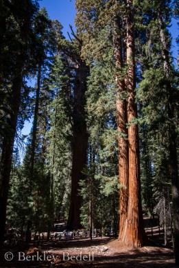 California_20140909_144