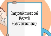 problems of local government in Nigeria