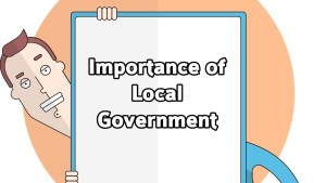 why is local government important