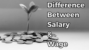 Meaning and Difference Between Salary and Wage