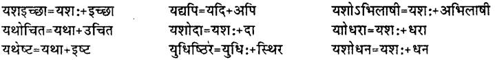 Bihar Board Class 12th Hindi व्याकरण संधि 21