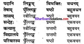 Bihar Board Class 8 Sanskrit Solutions Chapter 6 रघुदासस्य लोकबुद्धि 5