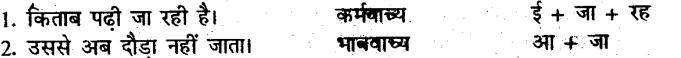 Bihar Board Class 10 Hindi व्याकरण क्रिया-भेद - 3