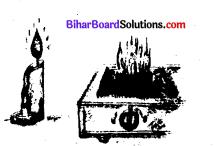 Bihar Board Class 8 Science Solution Chapter 1