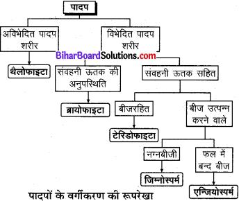 Bihar Board Class 9 Science Solutions Chapter 7 जीवों में विविधता