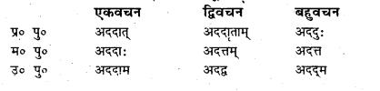 Bihar Board Class 7 Sanskrit व्याकरण धातु-रूपाणि 50