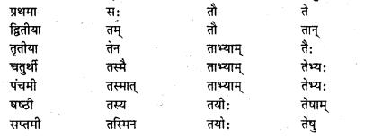 Bihar Board Class 7 Sanskrit व्याकरण शब्दरूपाणि 15
